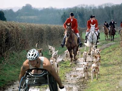 Tory Hunting Pack