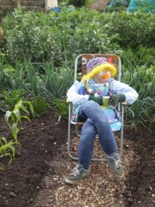 Colchester Allotments Scarecrow
