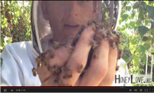 Honey Love Bee Keeper