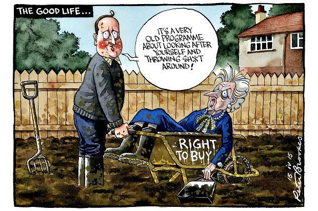 Peter Brookes Times Tory Allotmenteering