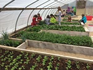 org garden program